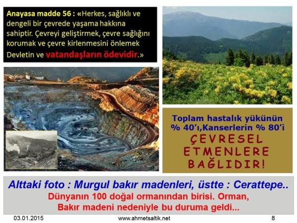 Cerattepe_ve_Murgul
